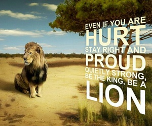 king, lion, and proud image