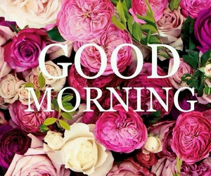 good morning, flowers, and morning image