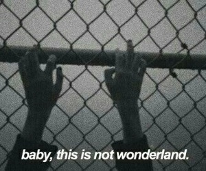 wonderland, grunge, and quotes image