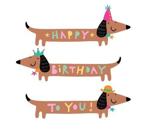 dog and birthday image