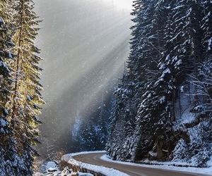 nature, snow, and road image