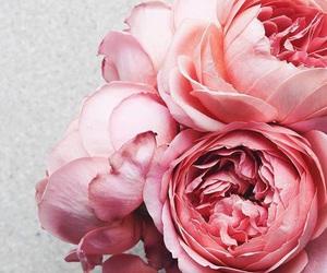 bouquet, flowers, and fleurs image