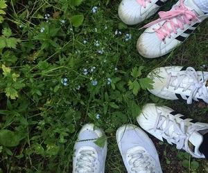 aesthetic, nature, and shoes image