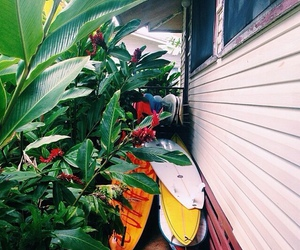 summer, surfboard, and tropical image