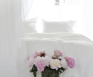 white and flowers image