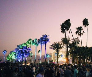 coachella, festival, and palm trees image
