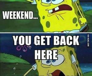 weekend, spongebob, and funny image
