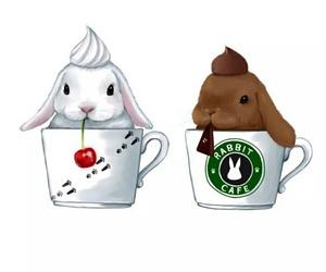 rabbit, bunny, and starbucks image