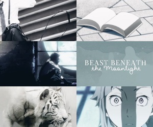 bungou stray dogs and tiger image