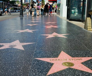 hollywood, stars, and fame image