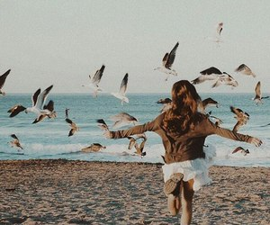 beach, girl, and birds image