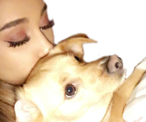 png, arianagrande, and overlays image