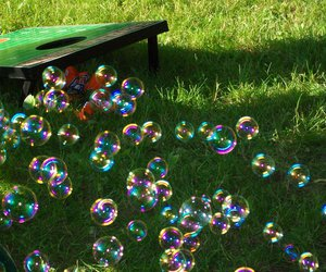 colorful, nature, and bubbles playing image