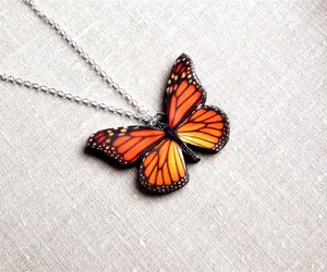 butterfly, etsy, and insect image