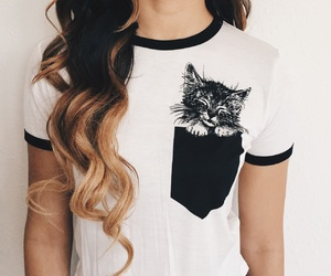 cat, fashion, and sale image