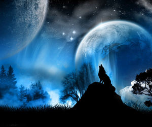blue, landscape, and wolf image