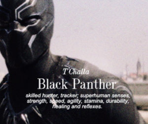 black panther, Marvel, and captain america image
