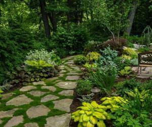 garden, outdoor inspiration, and inspiration image