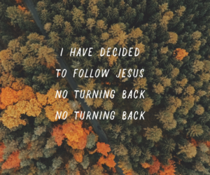 back, forest, and Hillsong image