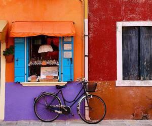 bicycle, orange, and purple image