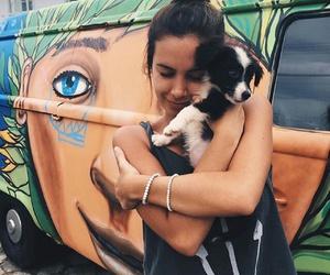 dog, puppy, and orange image