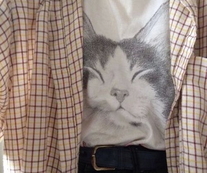cat, aesthetic, and clothes image
