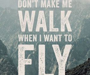 quote, fly, and walk image