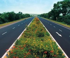 flowers, indie, and road image