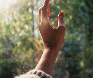 hand, light, and nature image