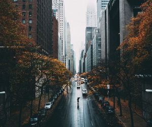 city, autumn, and fall image