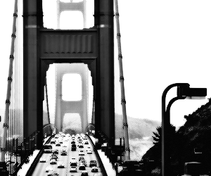 black and white, cali, and cars image