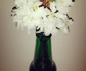 beer, flowers, and tumblr image