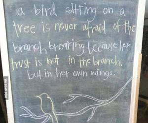 quote, bird, and believe image