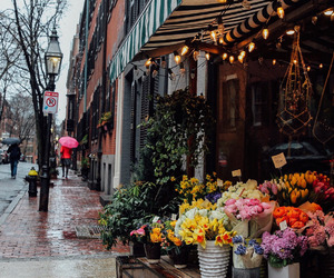 flowers, rose, and street image
