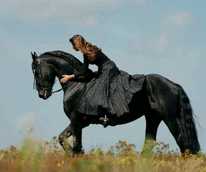 horse, black, and girl image