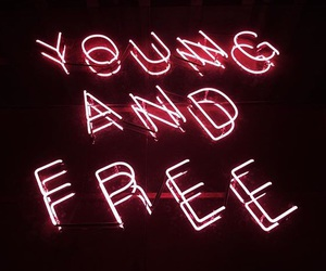 free, neon sign, and young image