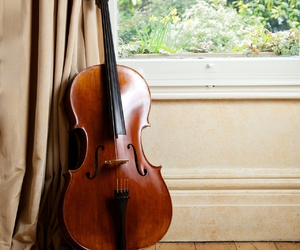 cello, classical, and music image