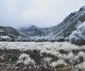 nature, winter, and wanderlust image