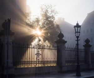 cobblestones, dresden, and sunrise image