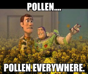 allergies, pollen, and springtime image