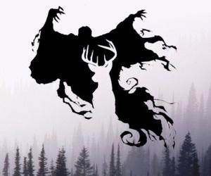 harry potter, hogwarts, and patronus image
