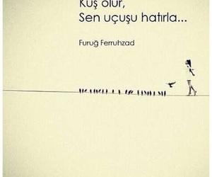 sözler and füruğ ferruhzad image