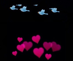 birds, hearts, and photo booth image