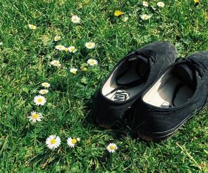 summer, sunshine, and love image