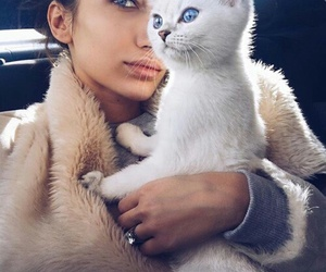 cat, girl, and fashion image
