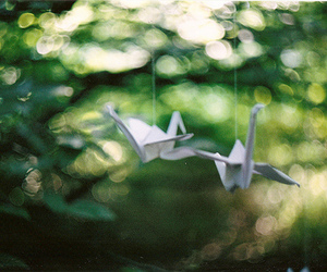 bird, japan, and Paper image