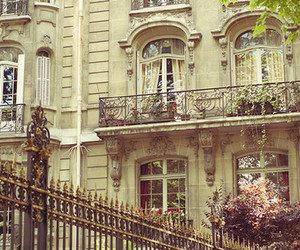 flowers, vintage, and architecture image