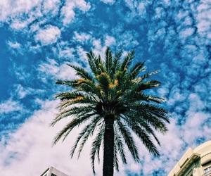 Barcelona, beach, and summer image