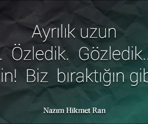 turk, anlamlı, and nazımhikmet image