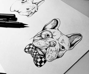 dog, draw, and sollefe image